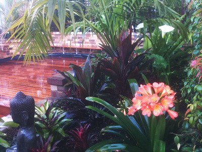 Tropical garden design sydney tropical exterior for Garden designs sydney