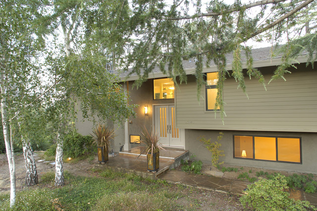 Whole house green contemporary exterior san for 1970 s split level remodel
