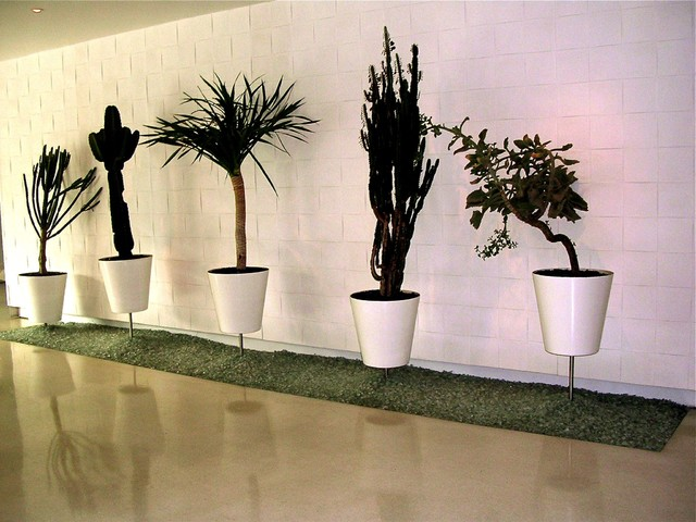 exterior Windowboxes