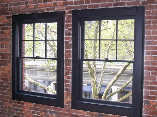Windows contemporary-exterior