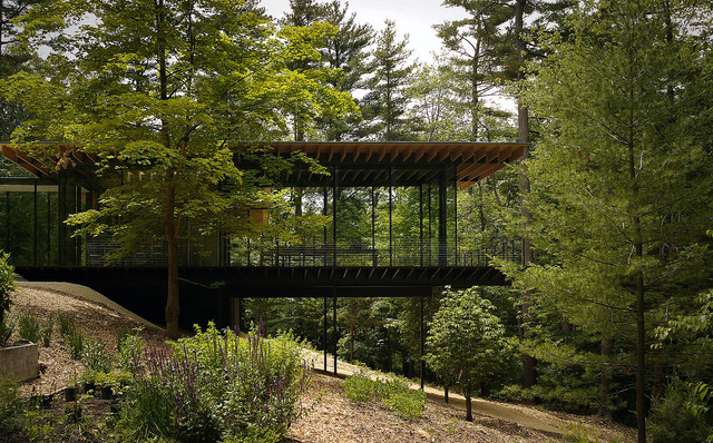 Wood and glass house modern exterior new york by for Modern house in the woods