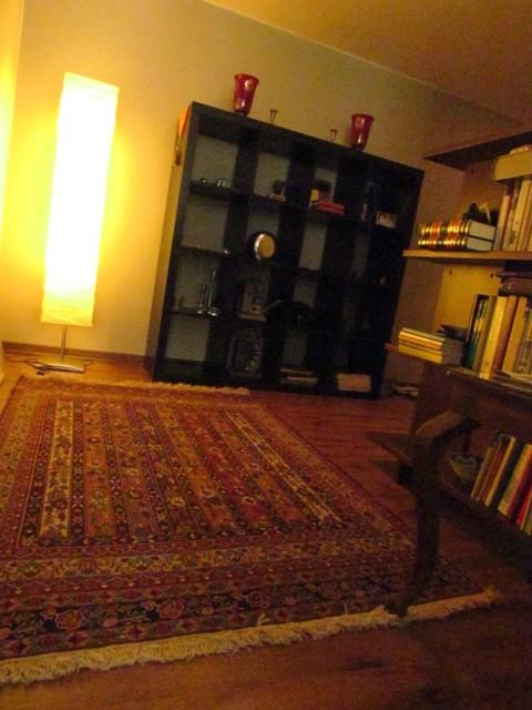 Ali Sanjabi - Family room modern-family-room