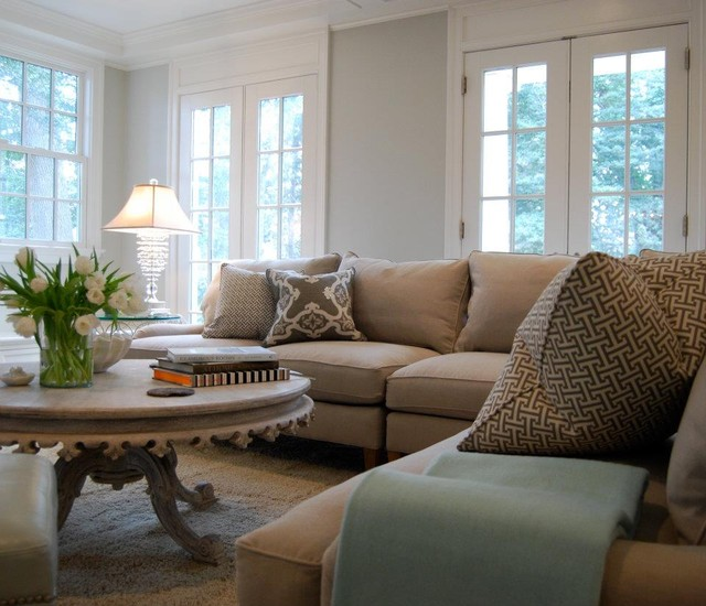 Aqua And Grey Family Room Traditional DC