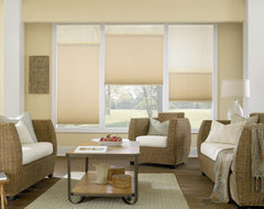 Bali Cellular Shades traditional-cellular-shades
