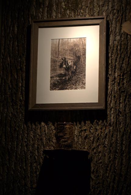 Bark Wall rustic-family-room