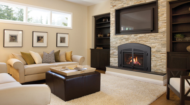 Regency Liberty L390 Gas Fireplace Insert Contemporary