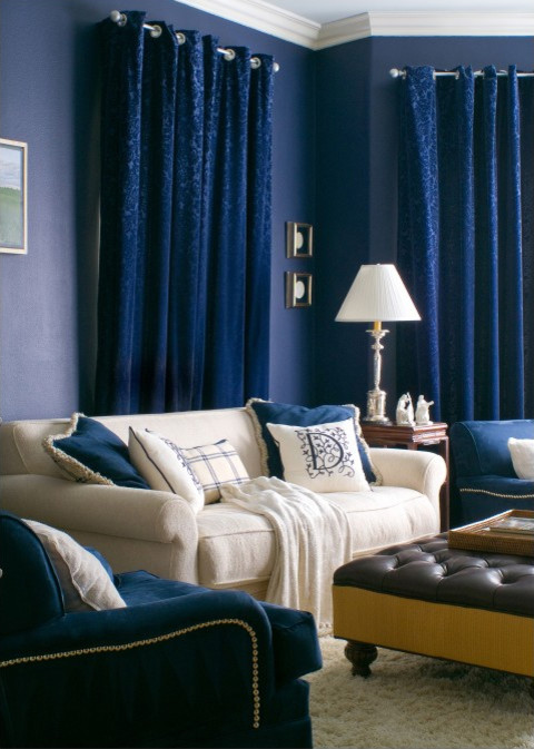 Example of a trendy family room design in Los Angeles with blue walls