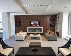 Custom Home Cinema contemporary-family-room