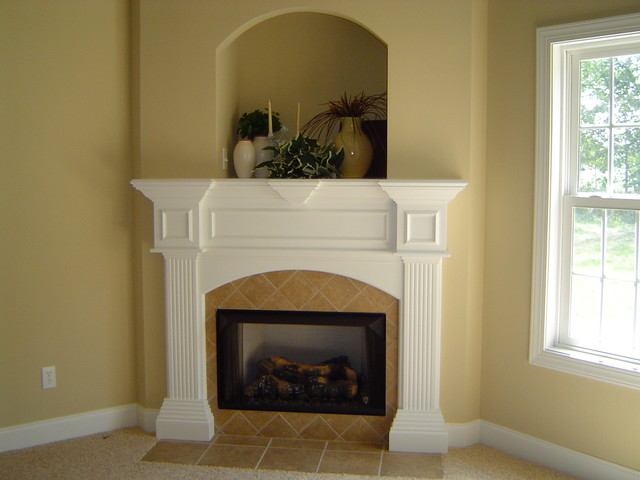 Fireplace / Mantel traditional-family-room