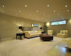 Fully Finished Basement Family Room in Totally Renovated 2-Story in Edmonton contemporary family room