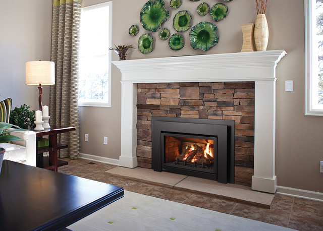 Gas fireplaces and inserts for Contemporary fireplace insert