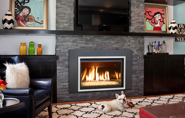 Gas insert fireplaces contemporary living room other metro by kozy heat fireplaces - Contemporary fireplace insert for a warm living room ...