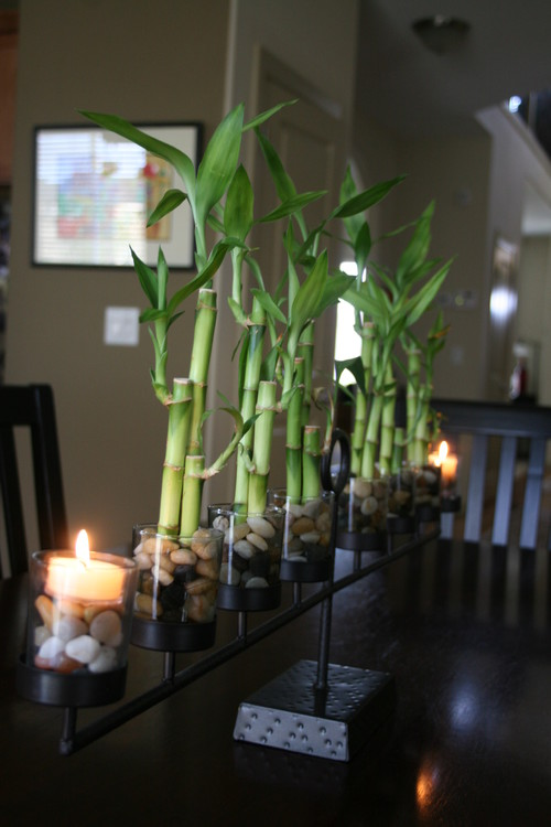 lucky bamboo arrangement dining table