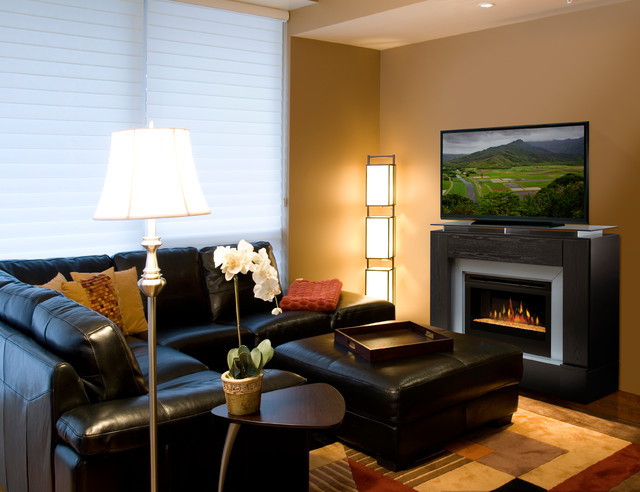 atrapadas en libros living room ideas with electric fireplace and tv images. Black Bedroom Furniture Sets. Home Design Ideas