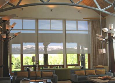 Insolroll Interior Solar Shade Traditional Family Room Denver By Insolroll Window