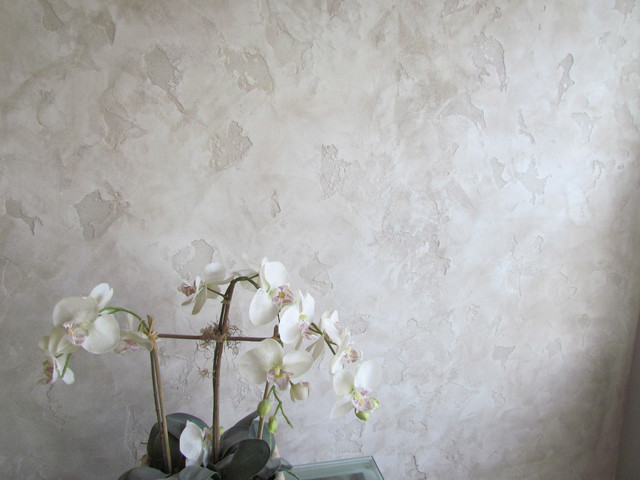 Intonachino Venetian Plaster Walls In A Family Room