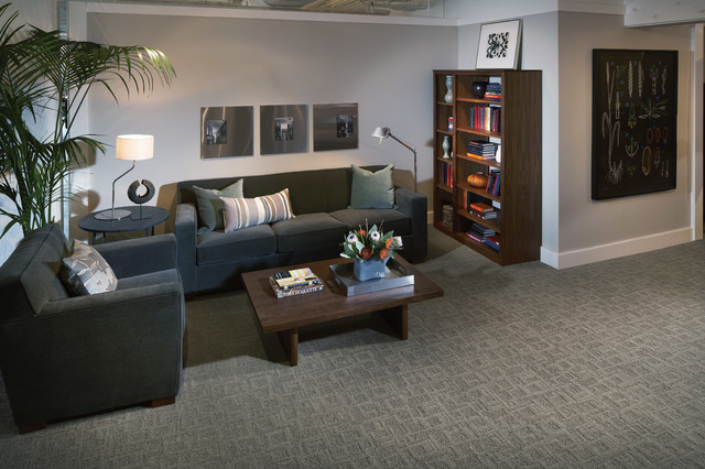 Karastan Basement Carpet Modern family room