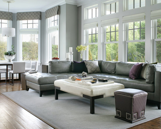 Gray Leather Couch Home Design Ideas Pictures Remodel
