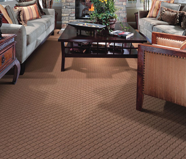 Moda carpet family room san francisco by diablo for Best carpet for basement family room