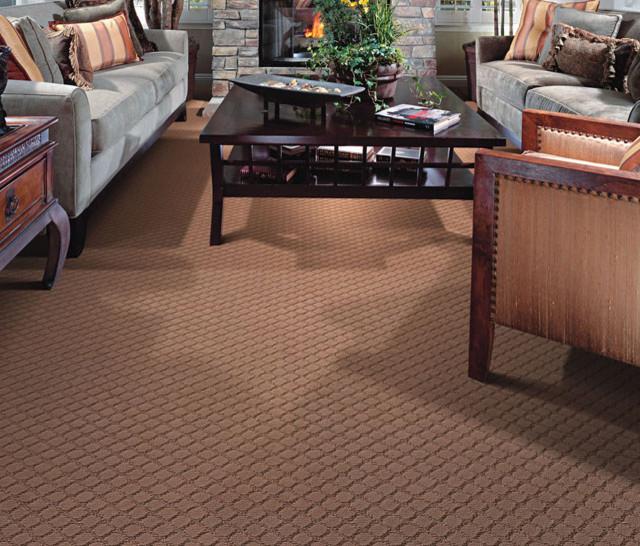 Moda Carpet Family Room San Francisco
