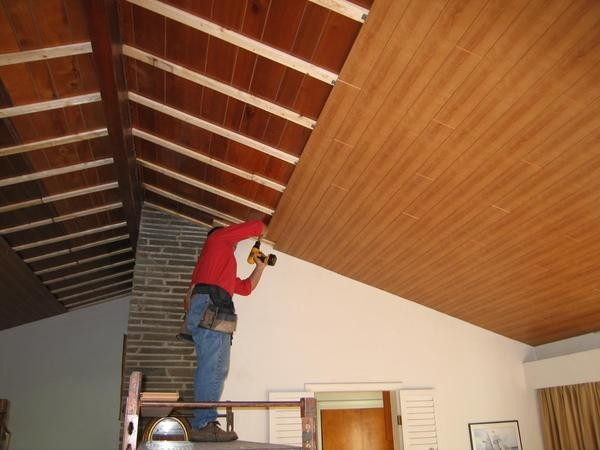 Plank Ceiling Traditional Family