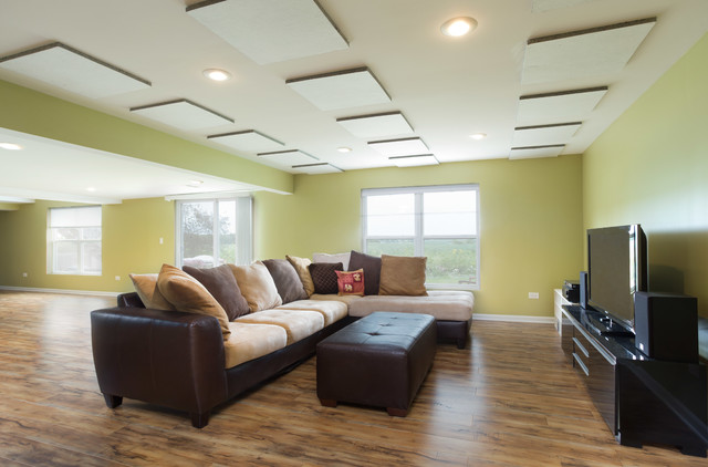 Round Lake Basement Contemporary Family Room Chicago
