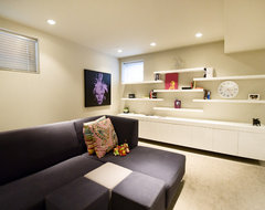 The Urban Executives contemporary family room
