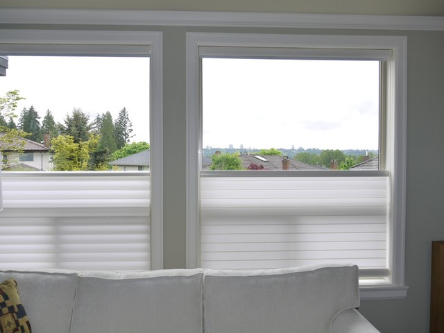 top down bottom up silhouette privacy with a view