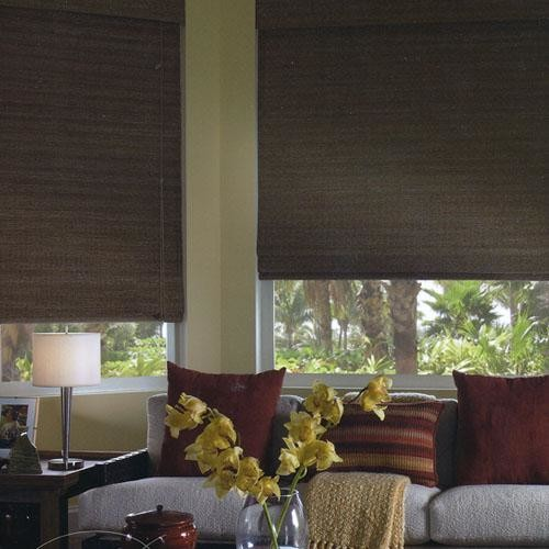 Woven Wood Shades For The Media Room Traditional