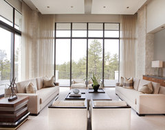 Contemporary Family Room transitional-family-room