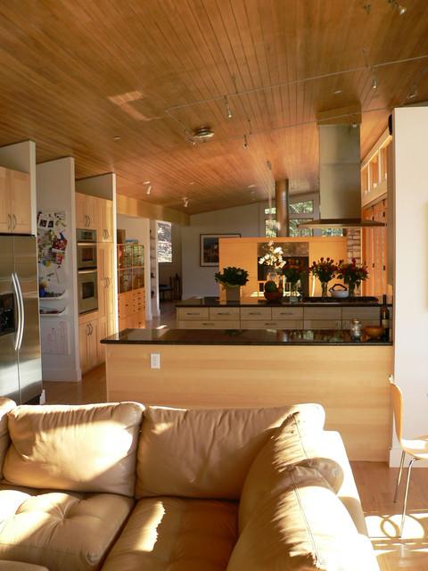 Valley Lane house midcentury-family-room