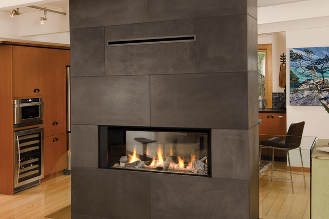 Valor Linear Series Fireplaces L1 See Through Modern Family