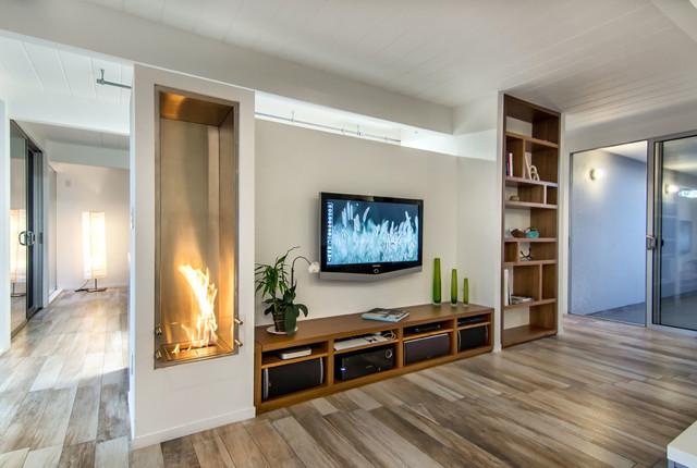 Ecosmart Fireplace