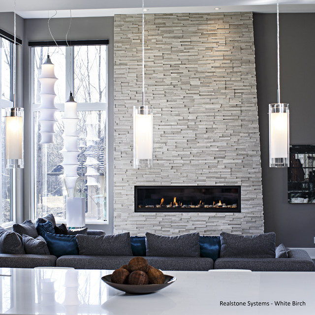 White Birch Fireplace - Contemporary - Family Room - Ottawa - by ...