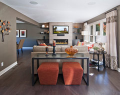 Baltes Remodel contemporary-family-room