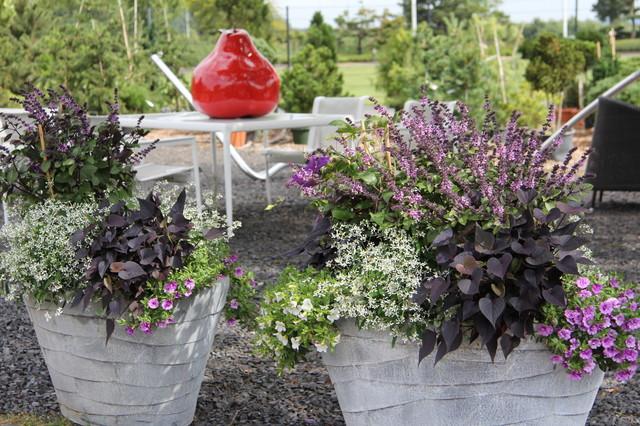 Garten Ehren bepflanzte gefäße zink garten hamburg garten ehren