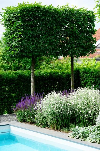 Blau in gr n ein naturnahes schwimmbad in einer gr nen for Vorgarten minimalistisch