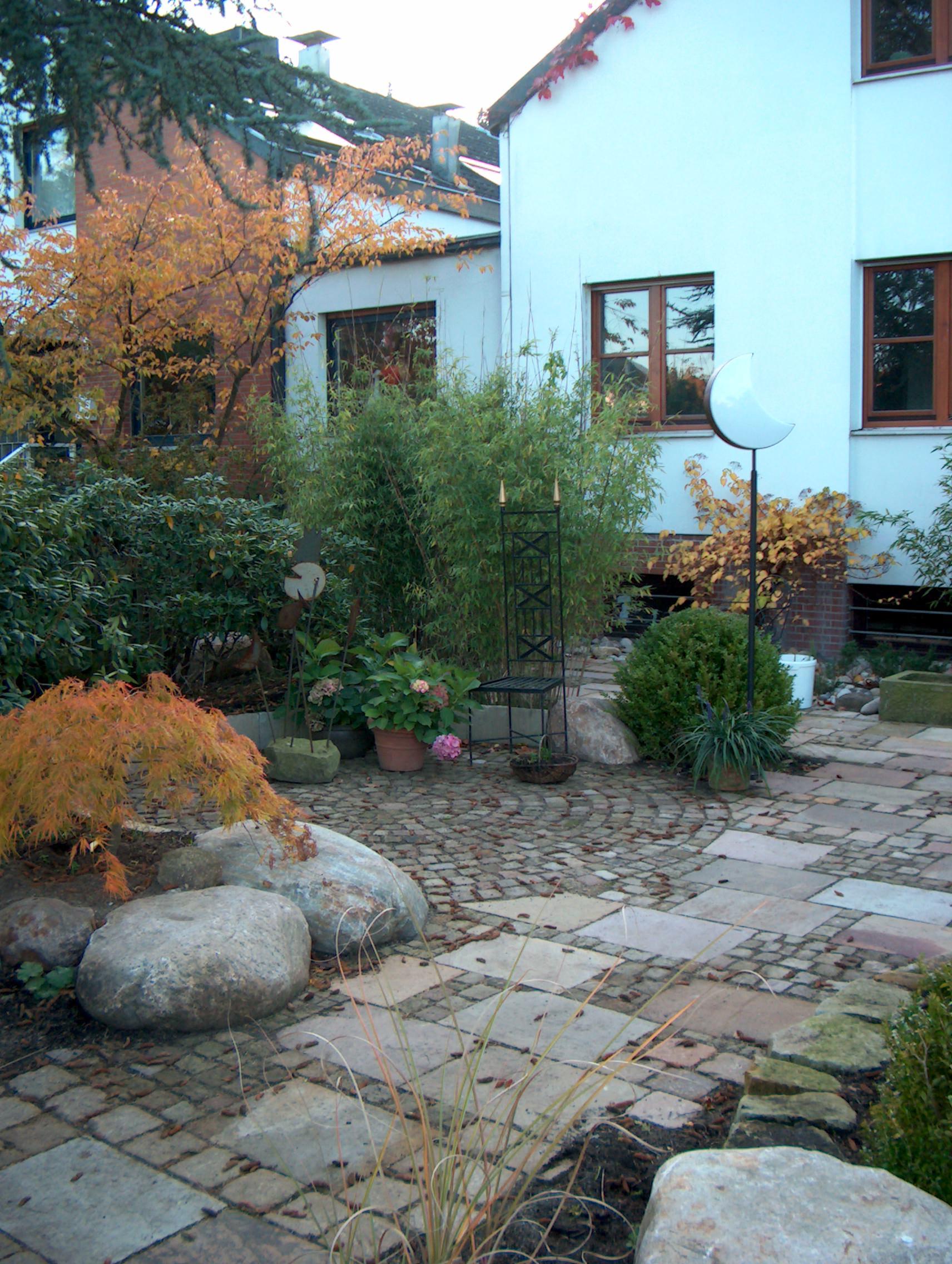 Hinterhofgarten Wildnis mit System