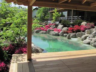 japanischer garten s dbayern asian landscape. Black Bedroom Furniture Sets. Home Design Ideas