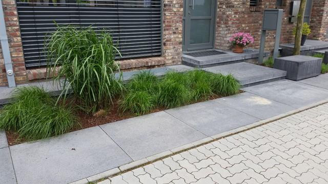 Moderner Vorgarten moderner vorgarten