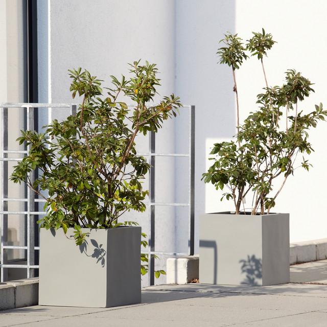 Pflanzkübel grau kubisch aus Fiberglas