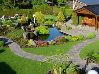 rhododendron und bux garten asiatisch garten k ln von sp rck garten und landschaftsbau. Black Bedroom Furniture Sets. Home Design Ideas