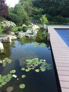 Schwimmteich asiatisch garten n rnberg von for Gartenmobel asiatisch