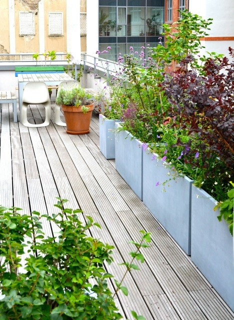 sonnige terrasse und dachgarten balkon berlin von nelka bepflanzung dachterrasse balkon. Black Bedroom Furniture Sets. Home Design Ideas