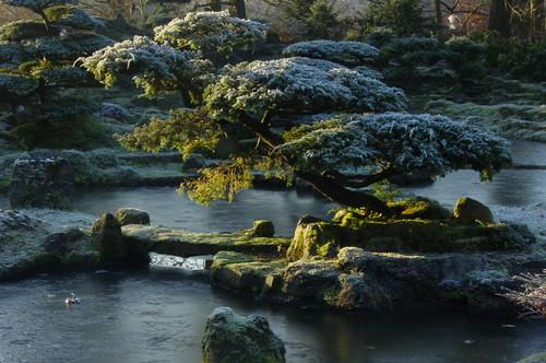 houzz Image - Zenkloster Liebenau im Winter asiatisch Garten Hannover | Veränderung