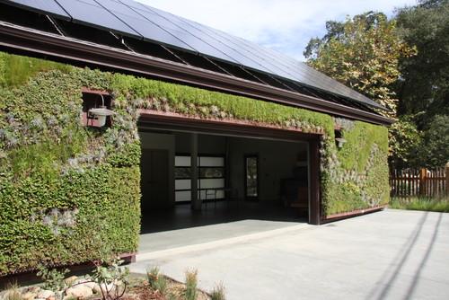 φυτά, όψεις, φυτεμένες όψεις, φυτεμένοι τοίχοι, φυτοφράχτες, οικολογική αρχιτεκτονική, πράσινη αρχιτεκτονική