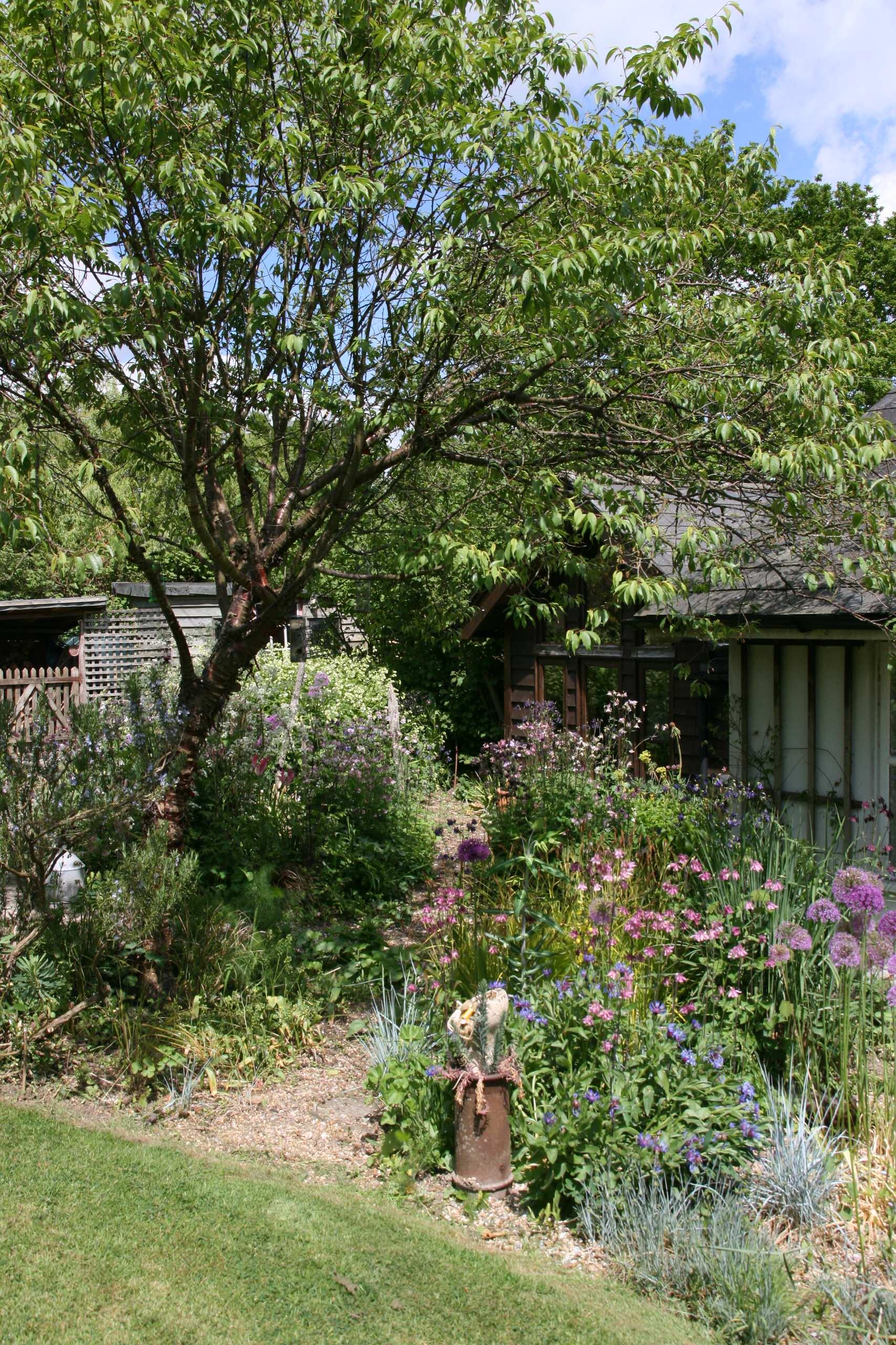 A Plantsmans Garden