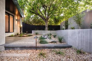 A tranquil abode - Contemporary - Garden - Melbourne - by