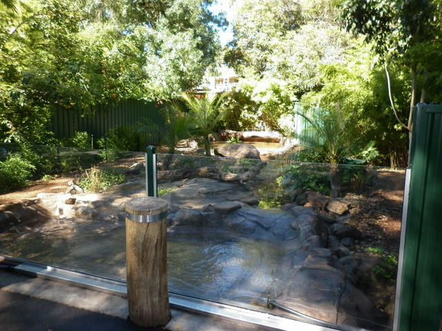 Adelaide zoo tropical landscape other metro by the for Landscaping ideas adelaide