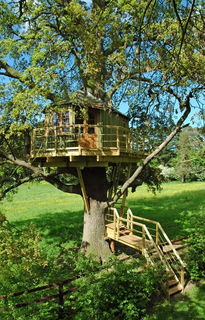Adult Treehouse Design in Co. Meath traditional-garden